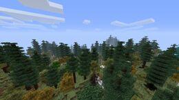 Boreal Forest.jpg