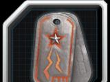Steel Sentinels/Achievement:Team Tagger