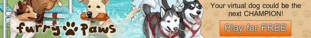 Your virtual dog could be the next champion!.jpg