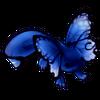 5802-midnight-butterlotl