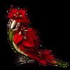 5515-ruby-parsettia