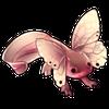 5801-common-butterlotl