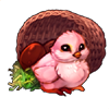 6882-pretty-pink-basket-chick
