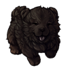6151-onyx-chow-pup