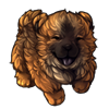 6152-cocoa-chow-pup