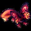 5803-sunset-butterlotl