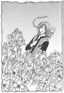 Raimon.Flowers