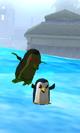 Penguin Attacking