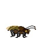 Cockroach idle.png