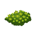 Green Flower Bed.png