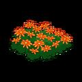 Orange Flower Bed.png