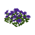 Purple Flower Bed.png
