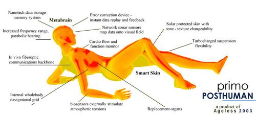 Transhuman Body