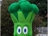 Broccoli Man