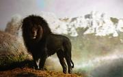 Black lion by paulie svk-d7m6ocr.png