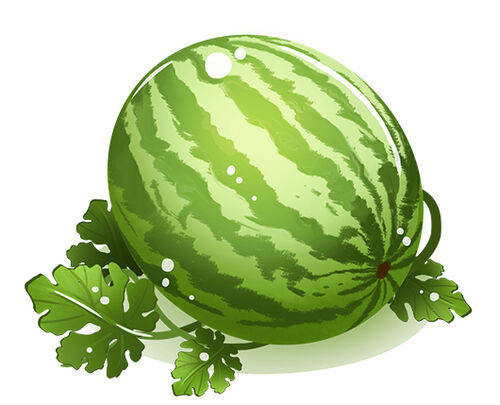 201607 watermelon main 530.jpg