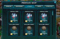 Premium Shop Window4