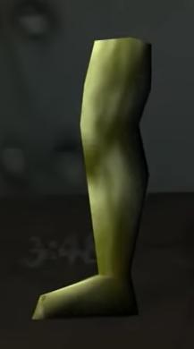 Right Leg