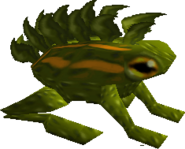 DragonToad