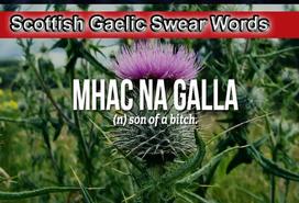 Scottish Gaelic Swear Words .png