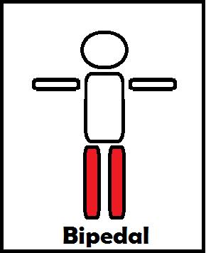 Bipedal