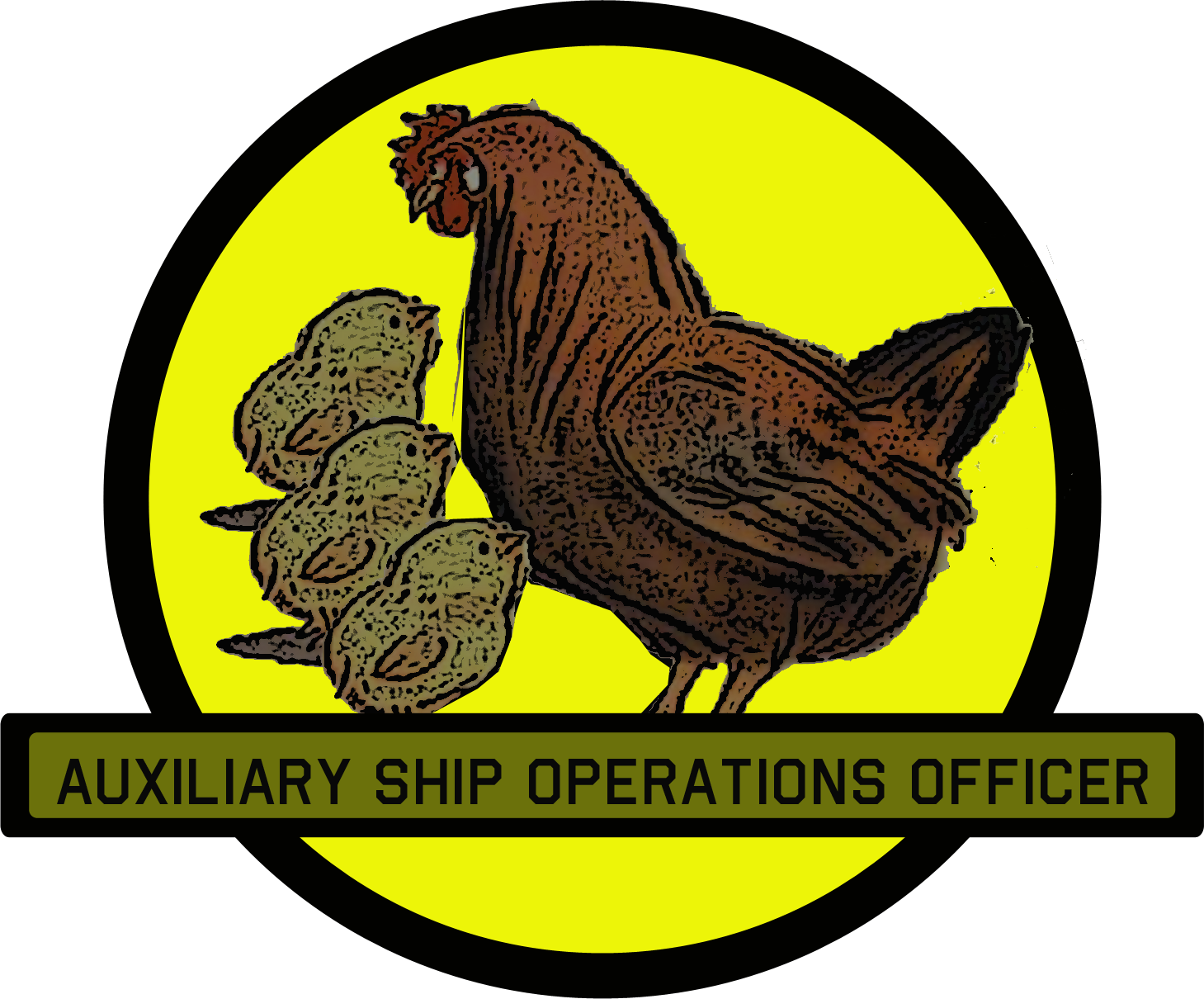 Auxiliary Ship Operations Officer
