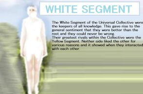 White dsegment.jpg