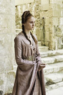 Fire and Blood 1x10 (2)