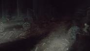 Squelettes des morts à Harrenhal