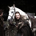 Winter is coming 1x01 (21).jpg