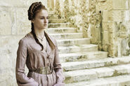 Fire and Blood 1x10 (1)