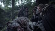 Eddard decouvre les loups(1x01).jpg