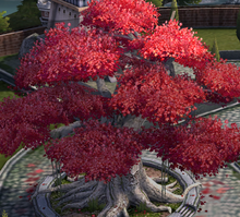 Weirwood Tree.png
