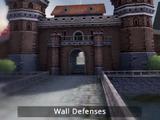 Wall Defenses
