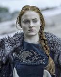 Sansa crop