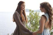 304 Sansa Margaery 01