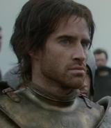 Baratheon Guard