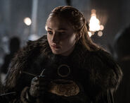 802 Sansa
