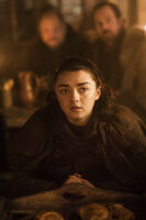 702 Arya Stark