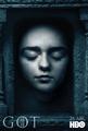 Poster S6 Arya Stark