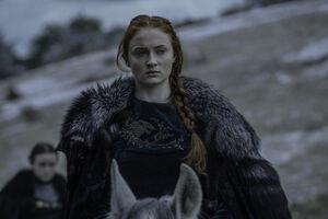 609 Sansa Stark(1)