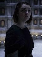 Arya Stark (S05E06)