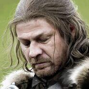 Ned 3 (1)