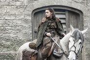Stormborn Arya