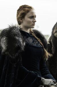 609 Sansa Stark