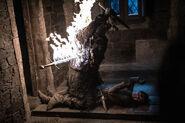 803 Arya Flammenschwert