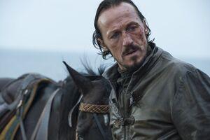 504 Bronn