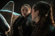803 Arya Sansa