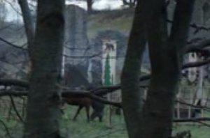 House Mormont banner.jpg