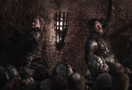 803 Jaime Brienne